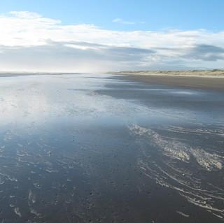 Foxton Beach(square size).jpg